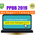 Info PPDB SMANSA